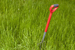 Garden Fork In An Overgrown Garden Royalty Free Stock Photo