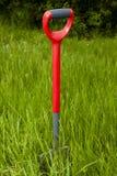 Garden Fork In An Overgrown Garden Royalty Free Stock Images