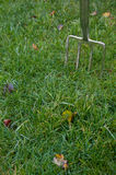 Garden Fork stuck in Grass. Shiny Silver Garden Fork stuck in the grass waiting to dig things up Stock Photography