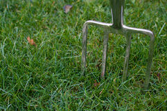 Garden Fork stuck in Grass. Shiny Silver Garden Fork stuck in the grass waiting to dig things up Stock Images