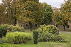 Garden and fortification wall at Kalemegdan park with perennial ornamental grasses (Miscanthus) and deciduous trees in late summer Royalty Free Stock Image