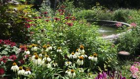 Garden with Fountain stock footage