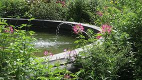 Garden with Fountain stock video footage