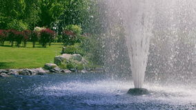 Garden fountain. Fountain splash in slow motion. Water fountain in summer park. Landscape design. Beautiful fountain in national park on background of green stock video