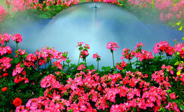 Garden fountain. Small fountain in a tropical garden surrounded by spring flowers royalty free stock images