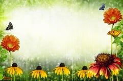 Garden frame Stock Image