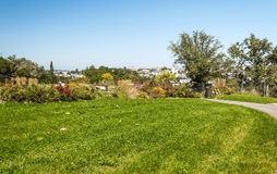 Garden in France. With flowers on a sunny day Stock Photography