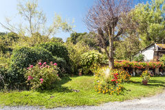 Garden in France. With house and flowers on a sunny day Stock Images