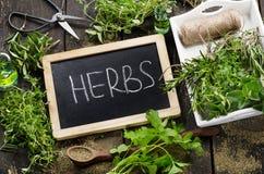 Garden fresh herbs on  wooden table Royalty Free Stock Photo