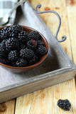 Garden fresh juicy blackberries on old tray Royalty Free Stock Photo