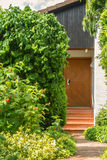 Garden with fresh red raspberries ready for harvest and a view to a house door at german village Stock Image