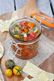 Garden Fresh Salsa. Fresh salsa with tomatoes, jalapenos and cilantro royalty free stock photography