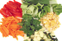 Garden Fresh Stirfry Vegetables Stock Photography