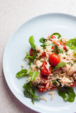 Garden fresh tomato and orzo salad. A freshly tossed garden salad including arugula, tomato, orzo, feta, and lemon zest sits on a blue plate Royalty Free Stock Photos
