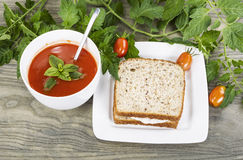 Garden Fresh Tomato Soup and Tuna Fish Sandwich Royalty Free Stock Images