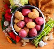Garden fresh vegetables Stock Photos