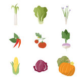 Garden fresh vegetables. Set on white background, including leek, lettuce, chives, chili pepper, tomato, turnip, corn, chicory and pumpkin Royalty Free Stock Images