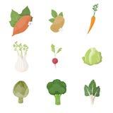 Garden fresh vegetables Royalty Free Stock Photos