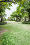 Garden with a Freshly Mown Lawn Royalty Free Stock Images
