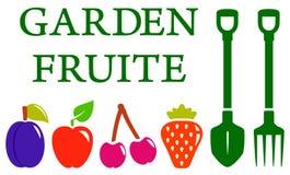 Garden fruite set Stock Photography