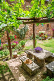 Garden full of flowers and vines in Tuscany Royalty Free Stock Photography