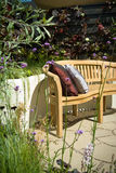 Garden furniture and cushion Stock Photos