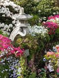 Garden. Garten bunt Flowers Blumen stock image