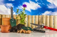 Garden, gardening theme with light blue background Stock Photos
