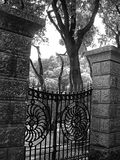 Garden Gate. With beautiful forest behind the gates stock photos