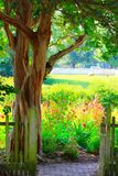 Garden Gate and bright, colorful flower garden royalty free stock photo