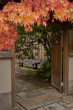 Garden gate entrance with Maple stock images
