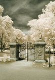 Garden Gate in Infrared Stock Photo