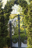 Garden gate with a lock royalty free stock photo