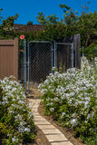Garden gate. Pathway and flowers at sunny day Royalty Free Stock Photos