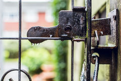 Garden gate on rainy day in early Spring, nature abstract Stock Photo