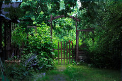 Garden gate. A gate to a green blooming garden in the middle of a warm summer Royalty Free Stock Photography