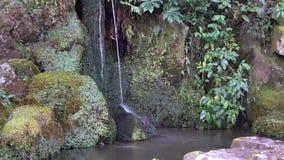 Garden at Ginkaku temple in Kyoto, Japan. Japanese garden with waterfall at Ginkaku temple in Kyoto, Japan stock video