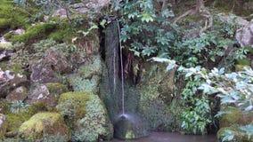 Garden at Ginkaku temple in Kyoto, Japan. Small waterfall at Ginkaku temple in Kyoto, Japan stock footage