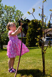 Garden girl. A 3,5 years old girl working in the garden Royalty Free Stock Photography