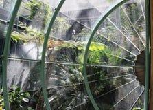 Garden through Glass in Paris Royalty Free Stock Photography