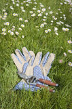Garden gloves and secateur on lawn Stock Photos