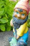 Garden gnome. A garden gnome at work stock images