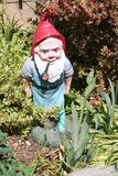 Garden gnome. Statue set in front of plants Royalty Free Stock Images