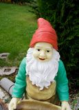 Garden gnome. On grass in a yard royalty free stock image