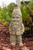 Garden Gnome. Standing in a flower bed Royalty Free Stock Photos