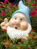 Garden Gnome. Surrounded by flowers stock photos