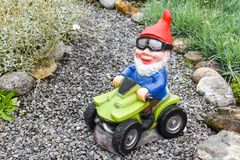 Garden gnome driving a Quad-bike in a garden Royalty Free Stock Image