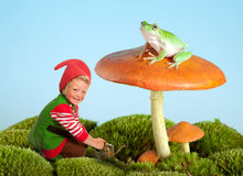 Garden gnome and frog. Boy dressed as a garden gnome and a frog on a toadstool as in a fairytale Royalty Free Stock Image