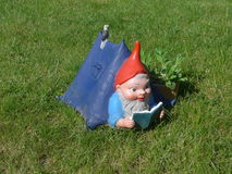 Funny garden gnome on a green meadow  Stock Photo
