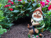 Garden gnome. Happy garden gnome in front of secret hole under plants Stock Photo